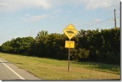 terrapin crossing