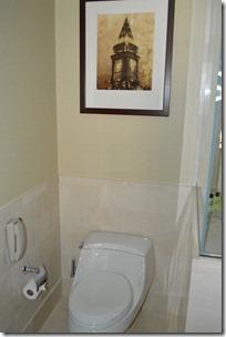 IC toilet