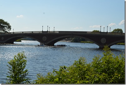 Charles River rowers