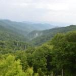 GSMNP-old-forest.jpg