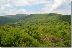 Graveyard Fields view