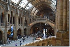 Natural History main hall