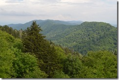 Newfound Gap view