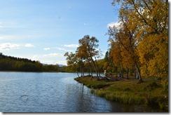 Folkeparken lake-2