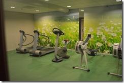 Ramada gym-2