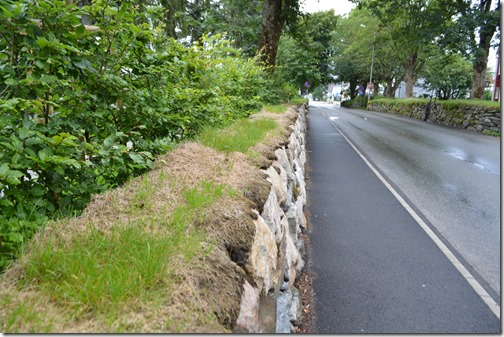 Stavanger stone wall grass