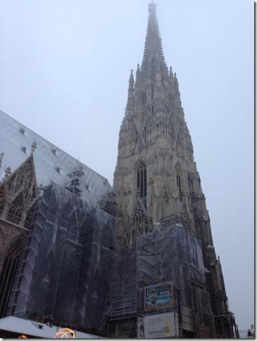 Wien Steffi