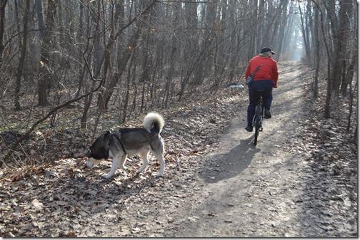 Sofia park dog