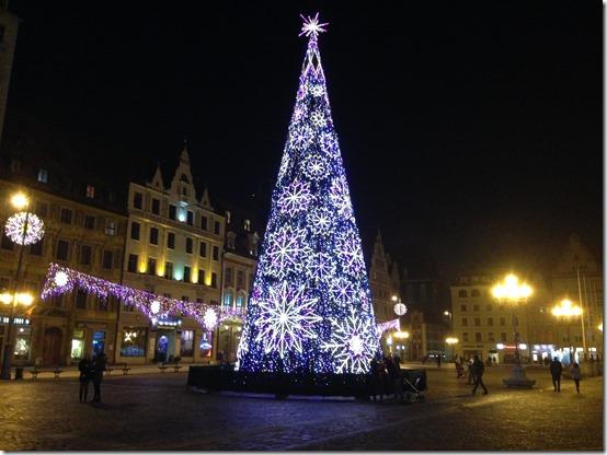 Wroclaw tree-2