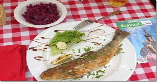 Poland trout