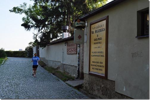 Vysehrad pub (2)