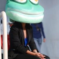 Seira Froggie