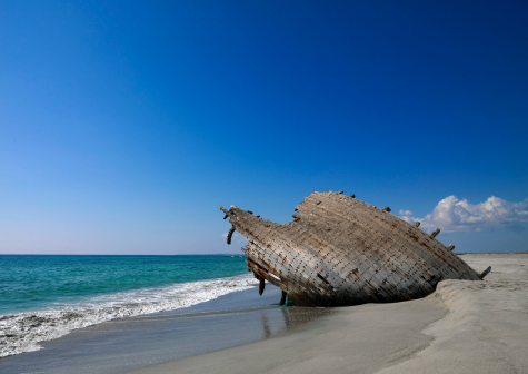 Masirah Island travel | Oman, Middle East - Lonely Planet