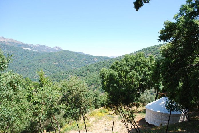 A white glamping tent looking out over pristine, green rolling hills with nothing else in sight