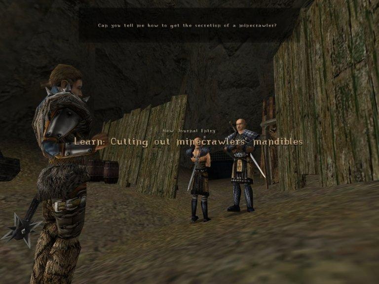 Gothic Part #10 - The Minecrawler's Nest