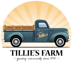 Tillie's Farm website design peabody ma