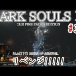 #35 ダークソウル3【DARK SOULS 3】THE FIRE FADES EDITION DLC第1弾 ASHES OF ARIANDEL DIED DIED DIED[ゲーム実況byとりてん]