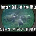 巨大なヨーロッパバイソン狩りに初挑戦【 The Hunter Call of the Wild 実況 #9 】[ゲーム実況byアフロマスク]