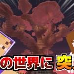 【マイクラ】全ての世界に旅に出よう!パート4【Arcana RPG】[ゲーム実況byあしあと]