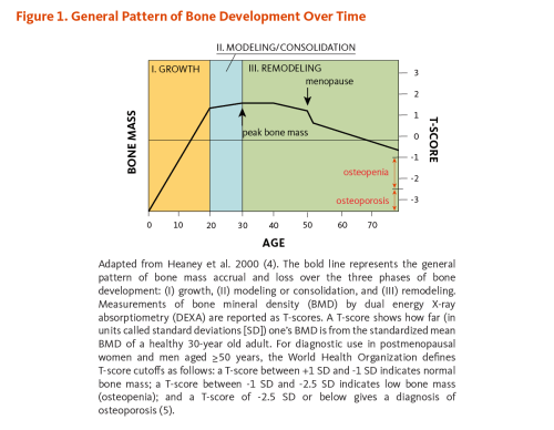 small resolution of figure 1 general pattern of bone development over time the figure shows the general