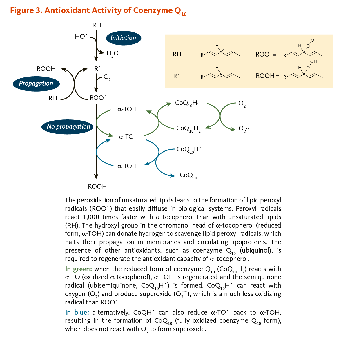 hight resolution of figure 3 antioxidant activity of coenzyme q10 the peroxidation of unsaturated lipids leads to