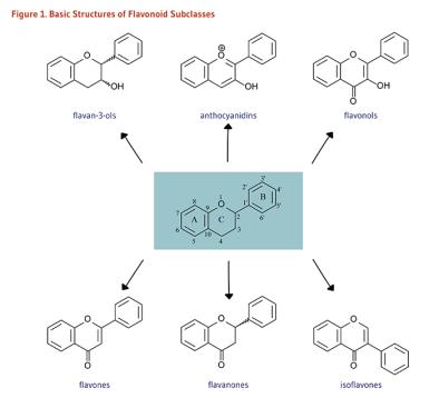 Flavanoid yang Menyimpan Banyak Fungsi Untuk Kesehatan Tubuh