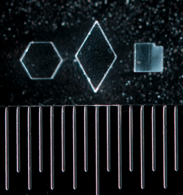 Micro Prism Examples With Scale
