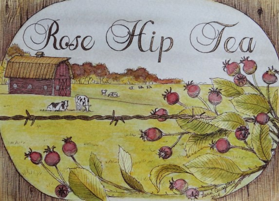 """""""Rose Hip Tea"""" Painted with natural tea colors. Original design (Available in archival Prints)"""