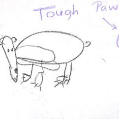 Panda Life Cycle Diagram Corsa C Towbar Wiring Black Bear Chart Pictures To Pin On Pinterest