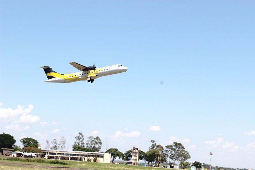 Alcançando novos voos - Passaredo.JPG