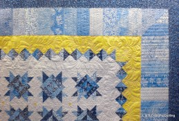 Janann's Blue and Yellow series 8