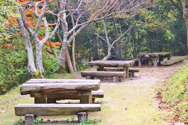Kinbuchi_Park (12)