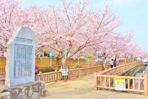 Shikanoi_River (7)