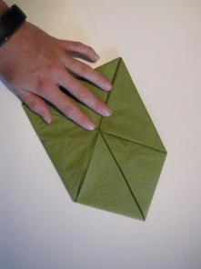 DIY Lotus sesrviet0,7