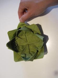 DIY Lotus sesrviet3,5