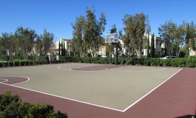 Basketball anyone?