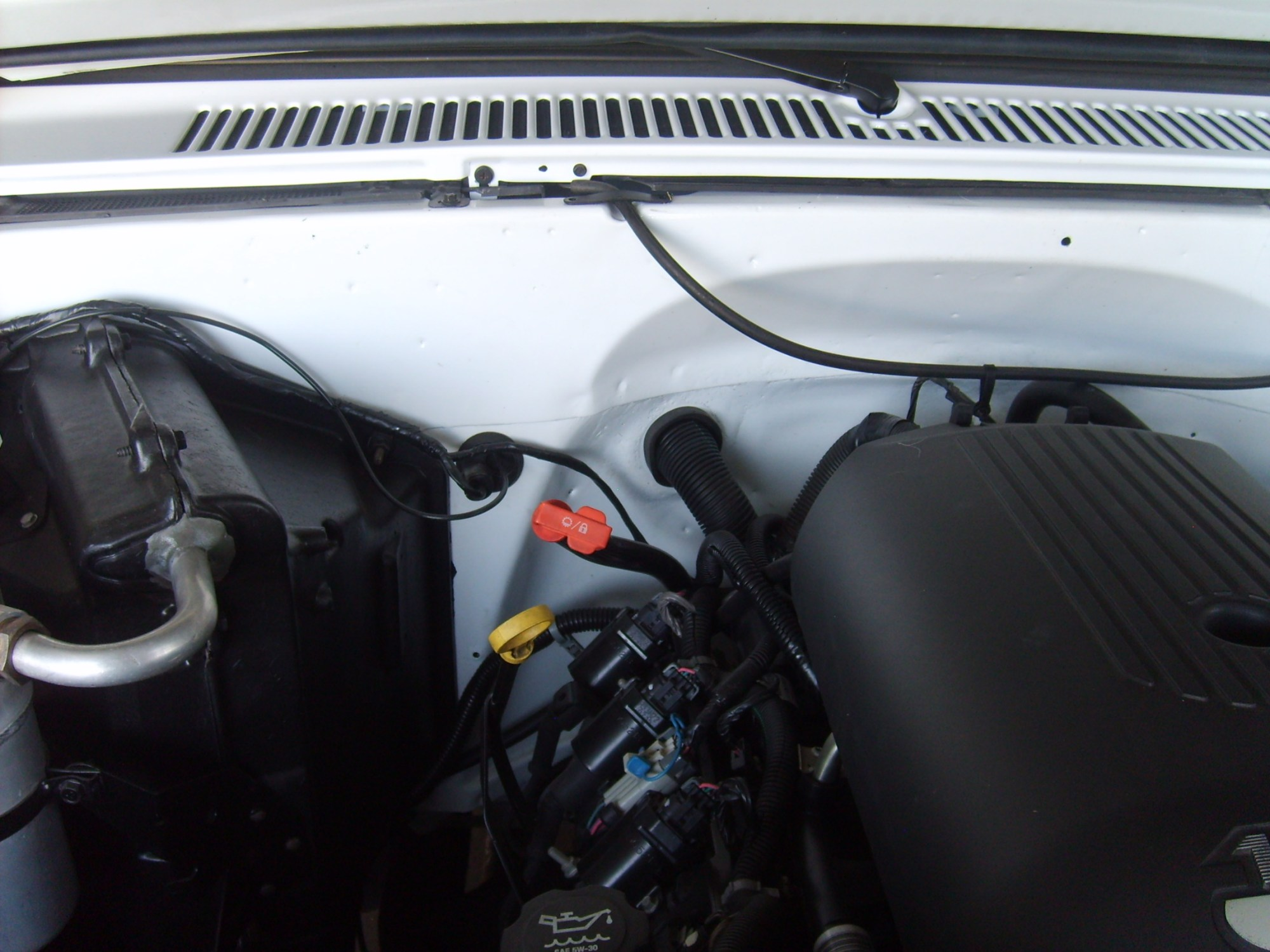 hight resolution of  ls conversion under hood pics how where you ran the harness 82 truck
