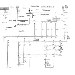 Msd Wiring Diagrams 6al 2 Gang Switch Diagram Lights Chevy  Wirdig Readingrat