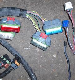 5 0 engine swap wiring harness 1988 mustang engine harness 7 3 powerstroke engine swap wiring harness [ 1279 x 959 Pixel ]