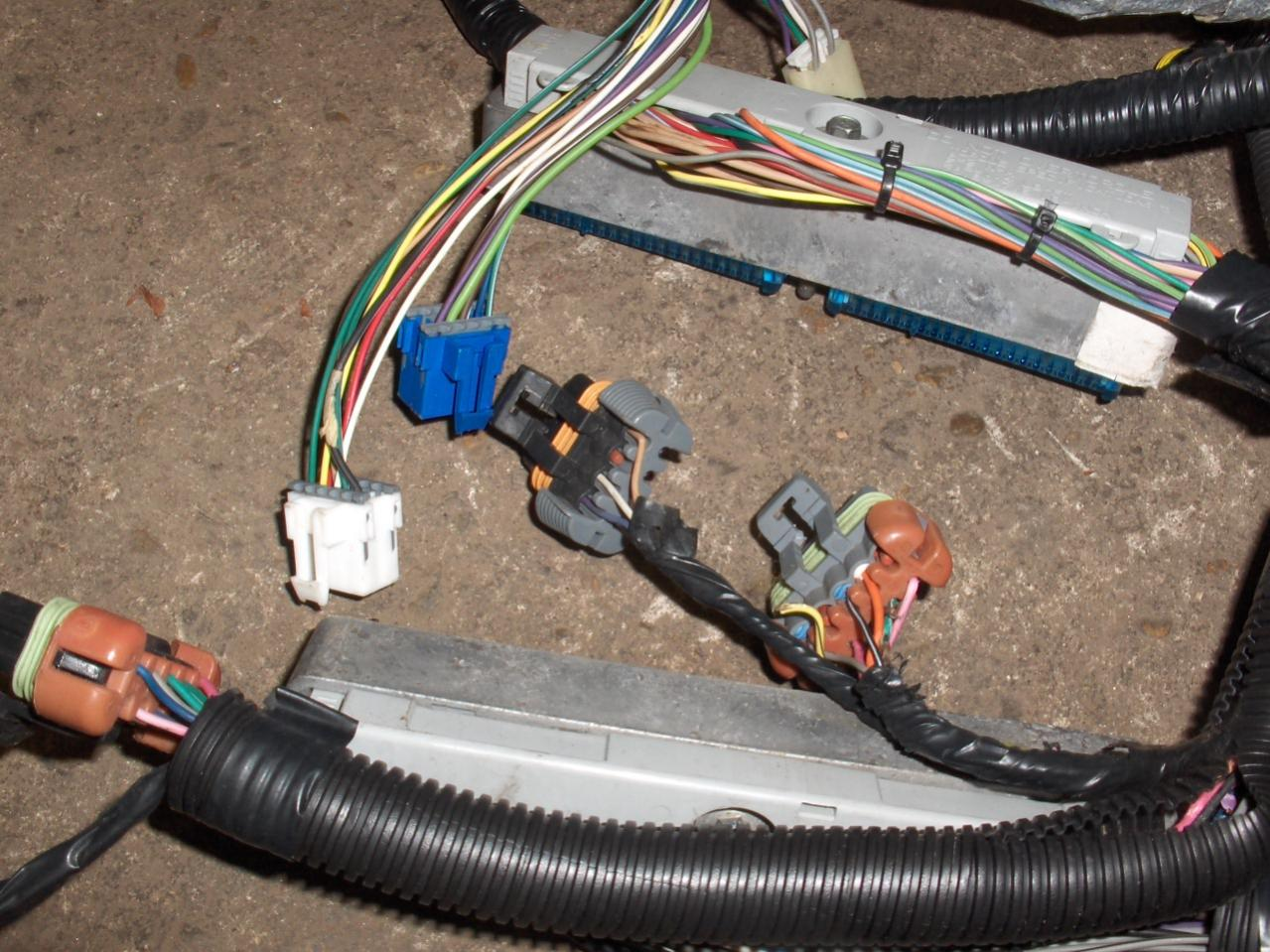 hight resolution of 1998 camaro ls1 t56 engine wire harness ls1tech camaro 700r4 wiring 4l60e wiring