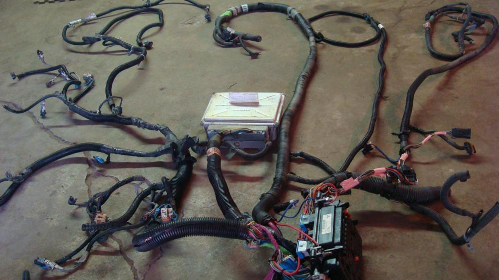 medium resolution of lq4 painless wiring harness search wiring diagram lq4 4l80e wiring harness lq4 wiring harness