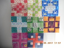 Tula Pink Sampler 1st 8 blocks