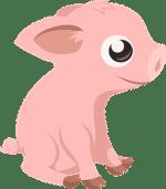 Mal wieder Schwein gehabt