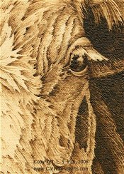cow pattern wood carving pyrography basics