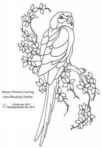 L S Irish macaw outline pattern
