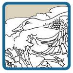Flying Mallard Drakes, Hens, and Farm Scene Patterns by Lora S irish