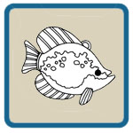 fishing lures, fly fishing, ice fishing decoy patterns