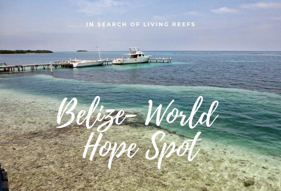 Belize- World Hope Spot