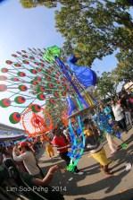 Thaipusam PgHill 5DMkIII 923-002