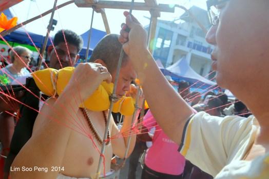 Thaipusam PgHill 5DMkIII 608-001